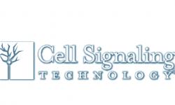 cellsignal-min (1)